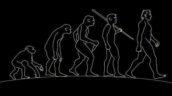 théorie de l'évolution Darwin