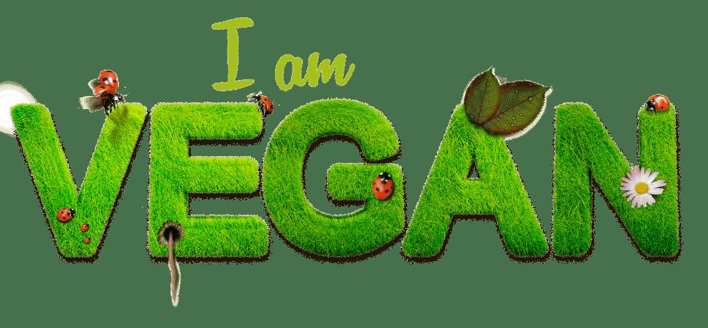 Texte en anglais indiquant je suis vegan